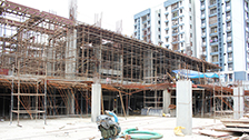 Project Live Status of gold tower kerala